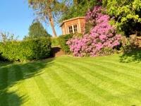 lawn mowing tunbridge wells, lawn cutting tunbridge wells, lawn care tunbridge wells, lawn maintenance tunbridge wells