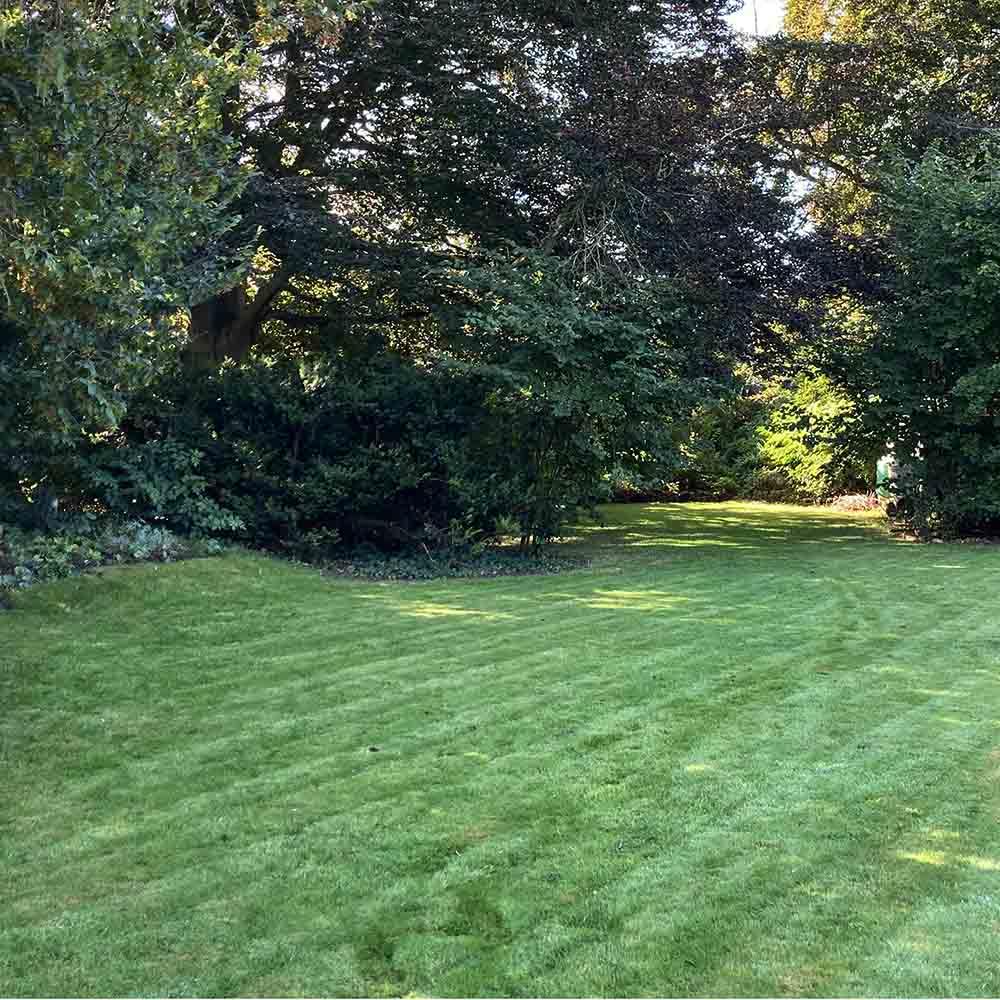 garden maintenance services, tunbridge wells